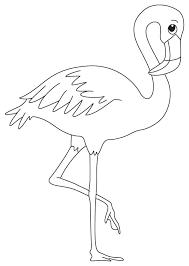 wading bird coloring download free wading bird coloring
