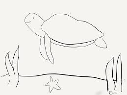 sea turtle coloring sheet the adventures of ellie and edmond