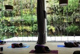 imagenes estudios yoga los 6 estudios de yoga más exclusivos de la cdmx forbes méxico
