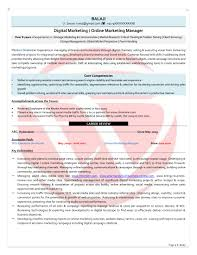 Resume Format For Jobs In Singapore by Digital Marketing Sample Resumes Download Resume Format Templates