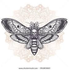 deaths head hawk moth moons stones stock vector 291864086