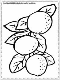 color orange coloring sheet get coloring pages