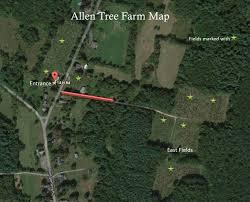 allen tree farm