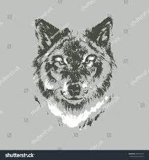 hand drawn wolf sketch on gray stock vector 254912539 shutterstock