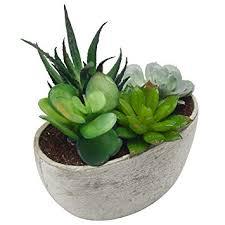 succulent arrangements decorative artificial succulent plant arrangement with