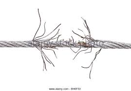 barb wire isolated stock photos u0026 barb wire isolated stock images