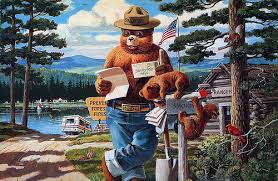 letters to smokey bear reveal promise of hope for the future usda