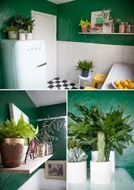 plante pour cuisine la fabrique à déco des plantes dans la cuisine