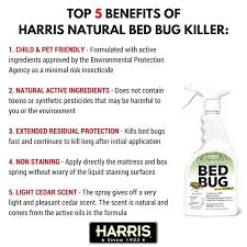 natural bed bug remedies home remedies to get rid of bed bugs permanently amazing bed bug