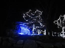 violet u0027s silver lining things to do in ohio cincinnati zoo