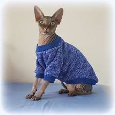 sphynx sweaters kitten sleeves marl blue jumper for a sphynx cat clothes