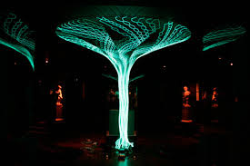 fiber optic cable tree bark exle sound frond sound frond