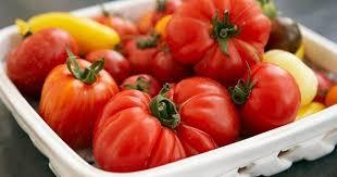 cuisiner la tomate 10 conseils pour bien choisir et cuisiner ses tomates cuisine az