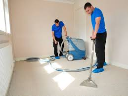 Carpet And Rug Cleaning Services Cleaning Inspector