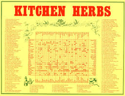 herb chart kitchen herbs chart rolled in tube all rare herbs