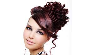 female yorkie haircuts dryorkies pastpuppy html medium hair