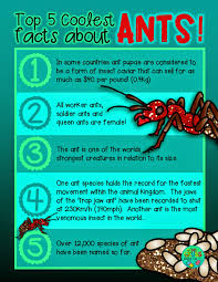free printable top 5 coolest facts about worms green grubs