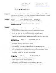 resume sle in pdf resumeal merchandiser sleal merchandising resume sle retail