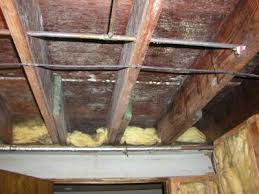 Removing Mold From Ceiling by Cleaning Mold In Basement Basement Mold Cleaning