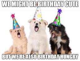 funny birthday wishes for your family u0026 friends