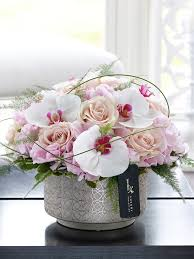 Orchid Delivery Orchid Flowers Send Flowers Flower Delivery Dublin Flower