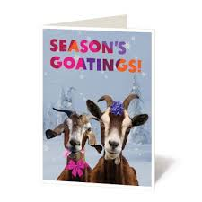 goat donation charitable gifts oxfam unwrapped