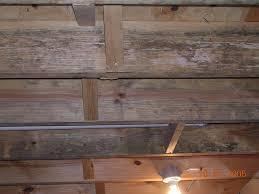basement ceiling joist mold internachi
