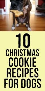 10 christmas cookie recipes for dogs christmas dog dog and apples