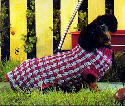 crochet pattern for dog coat distinctive free knitted dog sweater patterns you should check