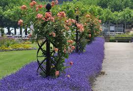 garden trellises obelisks home outdoor decoration