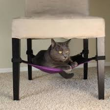 the very best cat bed for small spaces goody guidesgoody guides