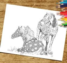 coloring book page for adults print and download horse foal and