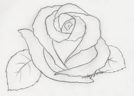 easy flower sketches in pencil our healthy tips blogspot com