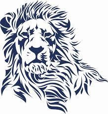 25 lion drawing ideas lion art lions