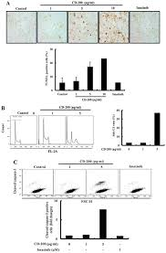 cd 200 induces apoptosis and inhibits bcr abl signaling in