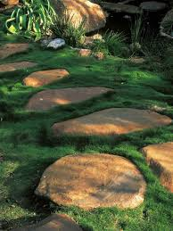 Patio Rocks Wall Stonegarden Indianapolis Landscaping Patio With Mulch Within