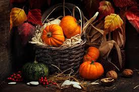28 imágenes sobre el día de acción de gracias o thanksgiving