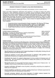 New Product Development Resume Sample by Resume Sample For Credit Analyst Resumedoc