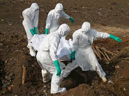 the biggest disease risks for the next pandemic business insider