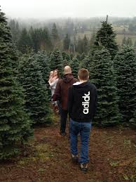 christmas tree hunting at leach tree farm in sherwood oregon