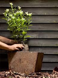 how to build a concrete planter 4 easy steps for building a