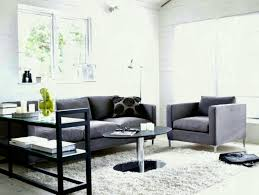 Best Gray Living Rooms Ideas Pinterest Couch Decor
