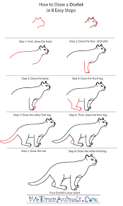 how to draw an ocelot