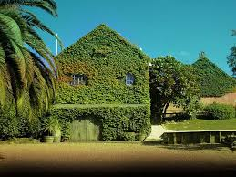 venues in island 22 best waiheke island wedding venues images on
