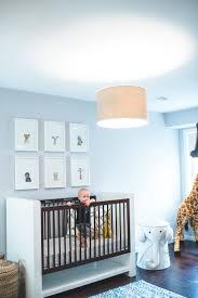 modern safari nursery safari nursery themed nursery and nursery