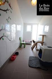 chambre sur cour chambre avec cour pension pour chats le bois du roy