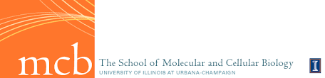 of molecular and cellular biology at illinois