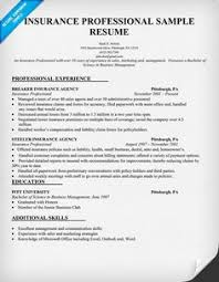 Insurance Sample Resume by Insurance Agent Resume Sample 02052017 Sales Manager Resume
