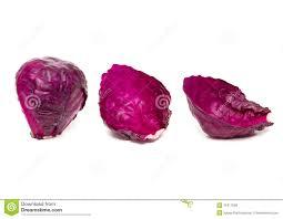 purple cabbage royalty free stock photos image 31617608
