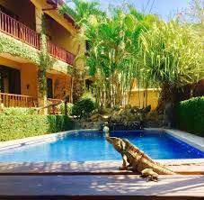 book the backyard hotel in jaco hotels com
